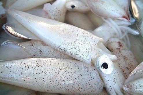 Как варить кальмары